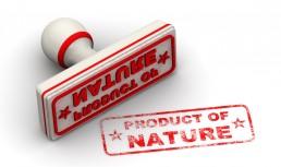Living Mom Birth Placenta Encapsulation Product